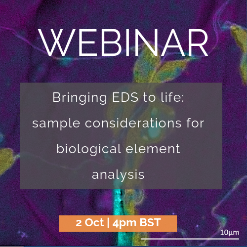 Bringing EDS to life | 2 Oct